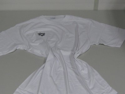 Arena Promo T-Shirt white M